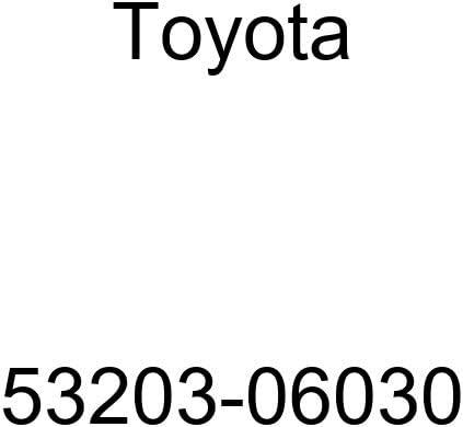 Toyota 53203-06030 Radiator Finally service resale start