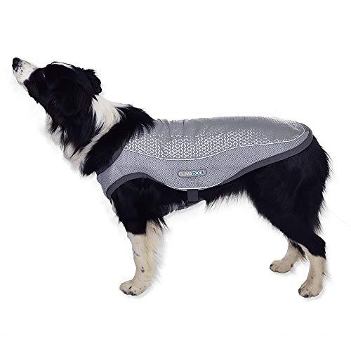 George Barclay Climacool - Kühlweste für Hunde | Kühlender Hundemantel für den Sommer (M)