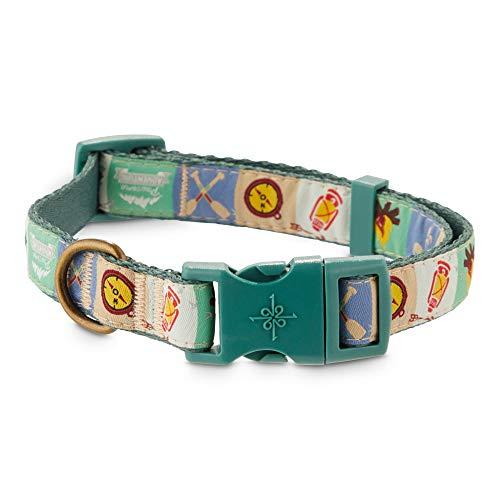 Petco Brand - Good2Go Pawsome Adventures Dog Collar, Medium