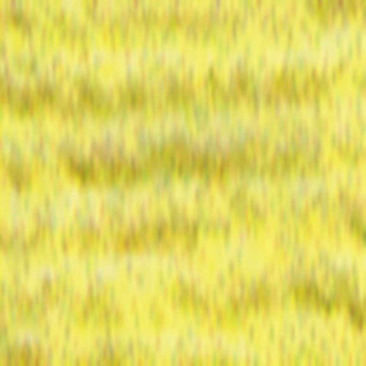 Sullivans Six Strand Embroidery Cotton 8.7 Yards-Very Light Topaz 12 per box