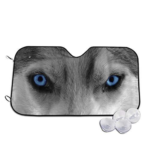 Kidhome Foldable Car Front Window Sunshade Sun, Wolf Angry Eyes Windshield Sun Shade Blocks Max UV Rays Blocker Visor Protector M