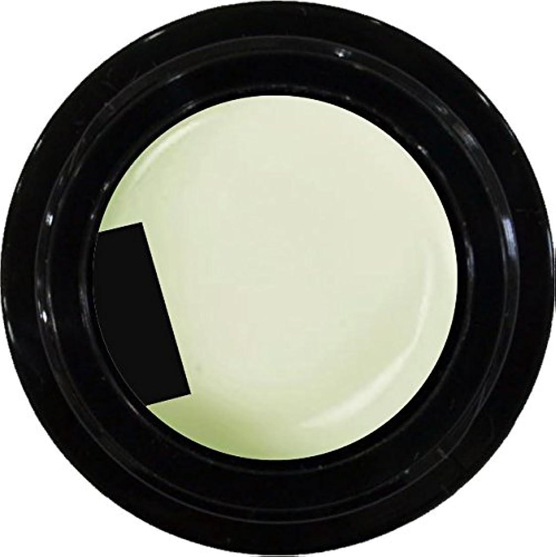 チーター天文学暴動カラージェル enchant color gel M002 BrancheBale 3g/ マットカラージェル M002 ブランシェベール 3グラム