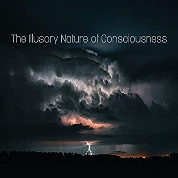 The Illusory Nature of Consciousness