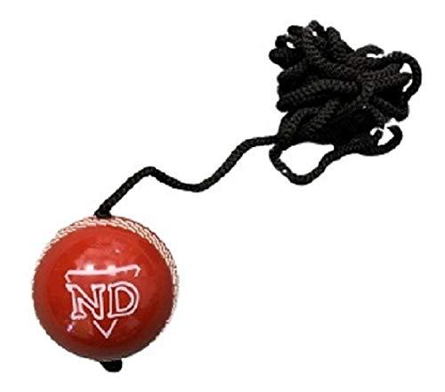 ND Cricket Batting Practice Stri...
