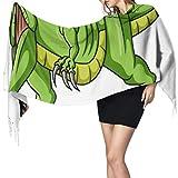 Bufanda de cachemira de imitación Women's Warm Shawl Scarf Fashion Long Shawl Cartoon Angry Green Dinosaur Growling Vector Large Soft Imitation Cashmere Pashmina Shawls Wraps Light Tassel Scarf