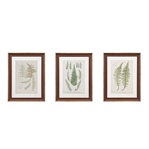 MARTHA STEWART Lady Fern Collection Wall Art Living Room Framed Linen Canvas Home Accent Country Lifestyle Bathroom Decoration, Ready to Hang Poster Painting for Bedroom, 18.75' X 24.75', Green