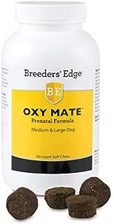 stud dog fertility supplements