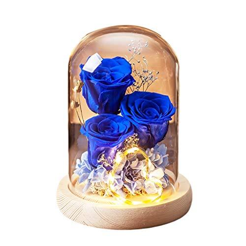 WCN Flores Adornos Flores Frescas Reales En Cúpula Vidrio Eternal Hecho A Mano Nunca Marchito Flores Eternas para San Valentín Día de la Madre (Color : Blue)