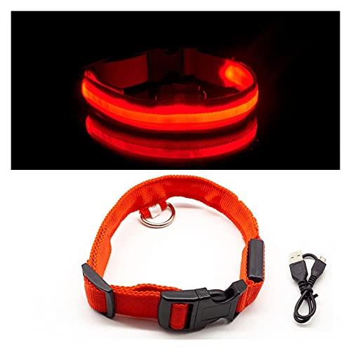XXWW Cxwypd Collares De Perro Mascotas Luminosos Luminosos Y Brillantes Collares Fluorescentes Que Llevan Al Perro En La Oscuridad (Color : Red, Size : M)