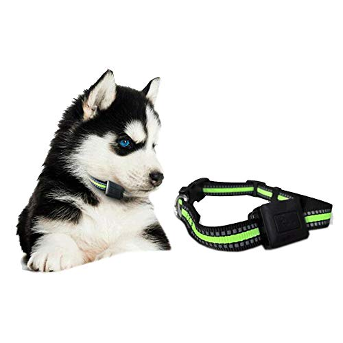 BCCDP Tractive GPS-Halsband Peilsender Katze Hund Tracker Ortung Tractive GPS Tracker...