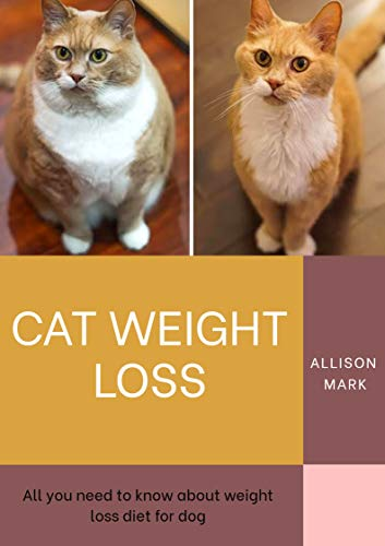 Cat Weight Loss : All You Need To Know About Weight Loss...