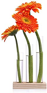 Ivolador Crystal Glass Test Tube Vase in Wooden Stand Flower Pots for Hydroponic Plants Home Garden Decoration (Rectangular Wooden Frame)…