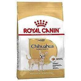 Royal Canin – Royal Canin Chihuahua Adult – 1.5 Kg