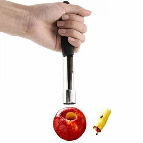 Royalr Obst Apfel Birne Entkerner Remover Apfelausstecher Obst Stahl Easy Twist Core-Seed Remover Pitter Küche Haus-Tool