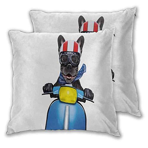 N\A Dog Driver Funda de Almohada Cremallera Oculta Extravagante Bulldog francés en Scooter con Casco Gafas Rocker Puppy Sin núcleo 2 PCS Gris carbón Azul Cobalto