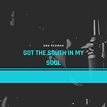 Got the South in My Soul