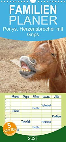 Ponys. Herzensbrecher mit Grips - Familienplaner hoch (Wandkalender 2021, 21 cm x 45 cm, hoch)