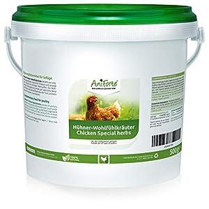 AniForte Hühner-Wohlfühlkräuter 2,5 Liter - Ausgewählte Natur Kräuter für Hühner, Löwenzahn, Brennnessel, Beifuß für…