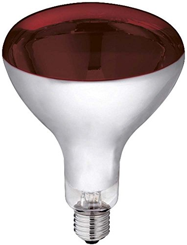 Kerbl 22244 Infrarotlampe Hartglas, 150 W, rot