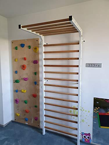 ARTIMEX Sprossenwand mit Klimmzug (schwedische Leiter) für Physiotherapie und Gymnastik - Wird in Heimen, Fitnessstudios, Kliniken und Fitnesscentern verwendet - aus Metall/Holz, 240 x 90 cm, Code 277