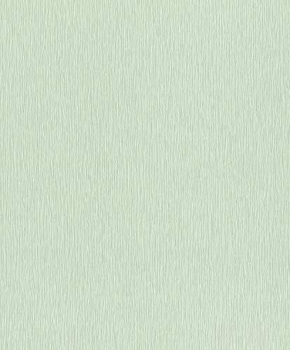 Rasch Tapeten Vliestapete (universell) Grün 10,05 m x 0,53 m Tapetenwechsel 809046 Tapete, 10.05 0.53 m