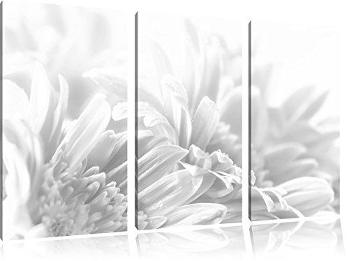 Pixxprint Gerbera-Blume / 3-Teilig/Gesamtmaß 120cm Leinwandbild bespannt auf Holzrahmen/Wandbild Kunstdruck Dekoration