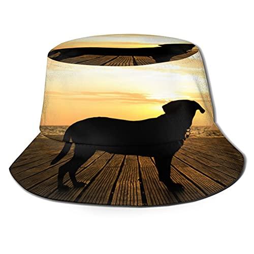 Sunset Dog Unisex Casual Bucket Sun Hat Fisherman Cap for Fishing Hiking Camping