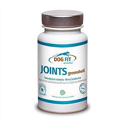 DOG FIT by PreThis® Joints greenshell | Grünlippmuschelpulver für Hunde | 100% Natur | Unterstützt die Gelenkfunktion | Für Gelenkschmiere & Knorpel | Grünlippmuschelextrakt Plus Vitamin B & E