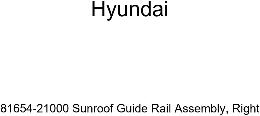 Genuine Hyundai 81654-21000 Sunroof Assembly Guide Finally popular brand Complete Free Shipping Rail Right