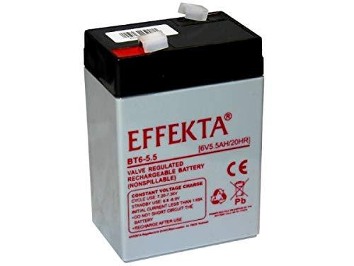 Ersatzakku kompatibel Sealake FM640A FM 640A 640 A 6V 6 Volt 6Ah AGM Blei Accu