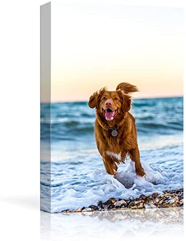 NWT Custom Canvas Prints with Your Photos for Pet Animal Personalized Canvas Pictures for Wall product image