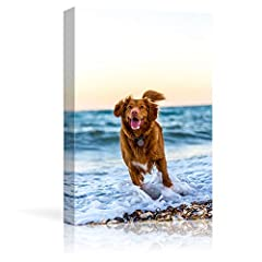Made in and shipped from USA. Stretched and framed, ready to hang(hanging accessory kit included). 1.5 inch thick frame bar for gallery quality profile. Print your own pictures to memory every precious moment you with your pets(dog, cat,fish,bird,hor...