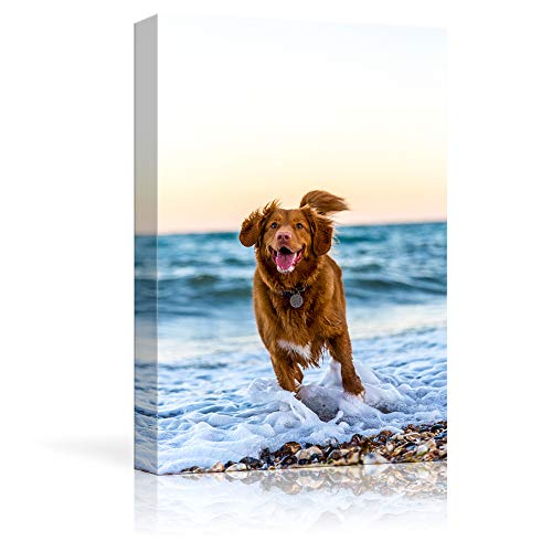 NWT Custom Canvas Prints with Your Photos for Pet/Animal, Personalized Pictures to Canvas for Wall Framed 10x8 inches