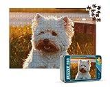Puzzles Personalizados 280 Piezas con Fotos | Varios tamaños Disponibles (4 a 2000 Piezas) | Material: Cartón | Tamaño: 280 Piezas (40 x 30 cm) - con Caja Personalizada