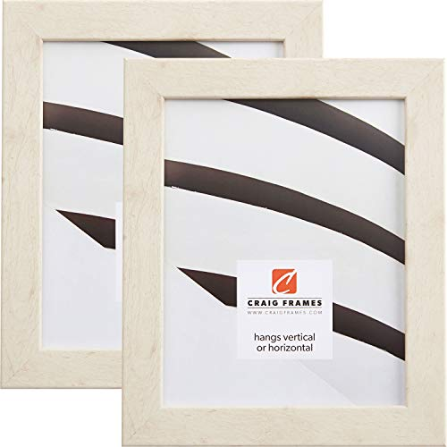 Craig Frames 26012 10 x 13 Inch Picture Frame, Distressed Off-White, Set of 2