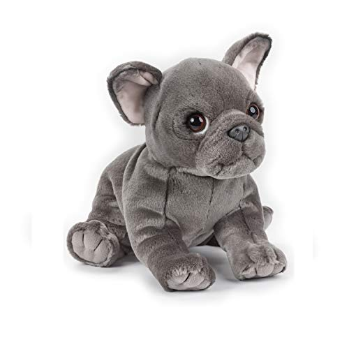 NATIONAL GEOGRAPHIC Lelly Blue French Bulldog, Sitting