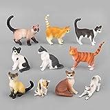 TOYMYTOY Katzenfiguren Spielzeug   Realistische Plastik Tier Miniaturen, 10er Pack