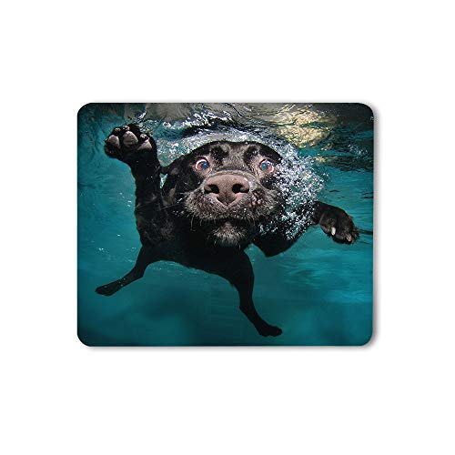Moslion Dog Mouse Pad Cute Animal Pet Black Dog Underwater in Swimming Pool Ocean Sea Computer Mouse Pad Rubber Large Mousepad for Gamer Desk Laptop Office Work 9.5x7.9 Inch Green