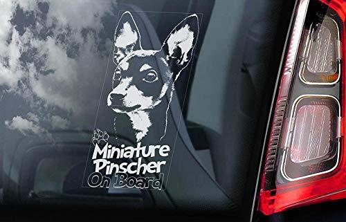 CELYCASY Miniature Pinscher on Board – Adesivo per finestrino Auto – Zwergpinscher Min Pin Dog Sign Decal – V03
