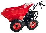 La capacité de charge de 300 kg dumper petite cylindrée du moteur à essence est 196cc brouette 4,8 kW,Red