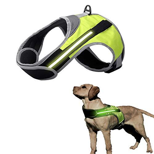 Patgoal Dog Vest Harnesses LED, Dog Leash Chest Strap LED, Multi Color LED Reflective Comfortable Padded Adjustable Straps, Lightweight Dog Safety Vest LED, for Night & Morning Walking & Running