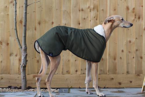 Abrigo impermeable con forro polar verde oliva, con correa ajustable a juego, galgo, galgo italiano, sighthound (XXLARGE 78,7 cm)