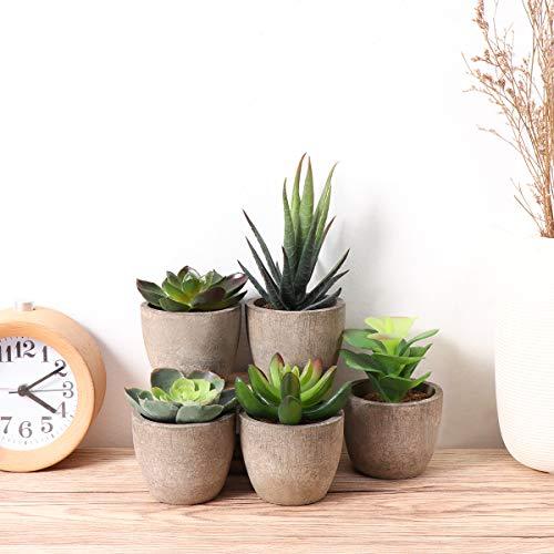 Yardwe 5 Stücke Künstliche Sukkulenten kunstpflanze mit Töpfen Tischdeko Hausgarten Deko - 9