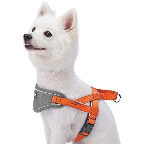 Blueberry Pet 8 Colors Soft & Comfy 3M Reflective Strips Padded Dog Harness Vest, Chest Girth 16.5