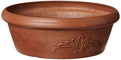 Terra Cotta Wide Bowl