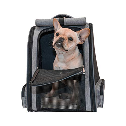 Scurrty Pet Carrier Backpack for Cats and Dogs Mesh Breathable |Dog Carrier Pet Carrier| Travel Ventilated Design Breathable Dog Carrier Backpack, Pet Carrying Hiking Traveling Camping Backpack
