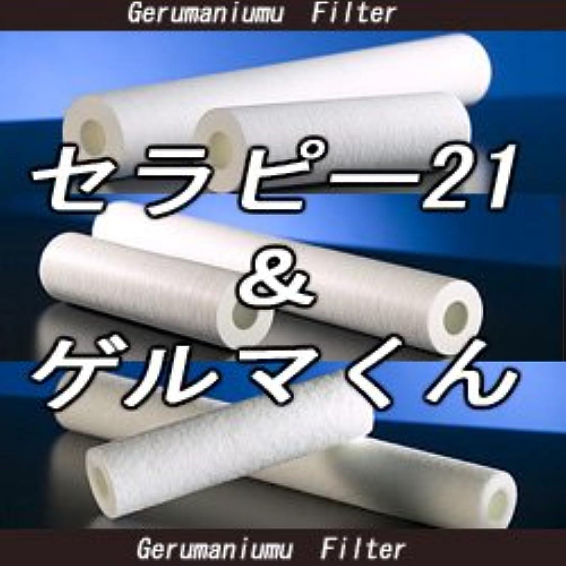 蒸発する先一回セラピー21?ゲルマくん【交換用フィルター 6本セット】ゲルマニウム温浴?温浴器