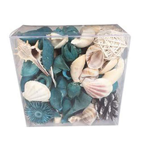 Huante Muebles para el Hogar DecoracióN de Interiores Aromaterapia Planta de Tintura Desodorante Flor Seca con Conchas en el OcéAno