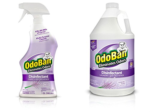 OdoBan Ready-to-Use 32 oz Spray Bottle and 1 Gal Concentrate, Lavender Scent - Odor Eliminator, Disinfectant, Flood Fire Water Damage Restoration