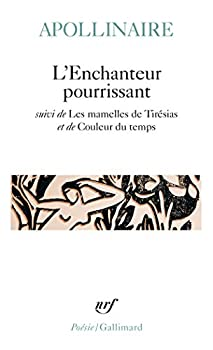Pocket Book Enchant Pourr Les Mame [French] Book